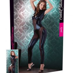 Wetlook catsuit met powernet